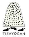 LogoHorizontalTizayuca